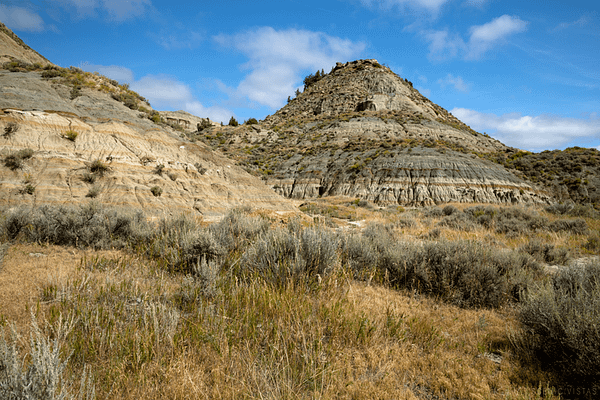 Rolling hills of the badlands in Theodore Roosevelt National Park
