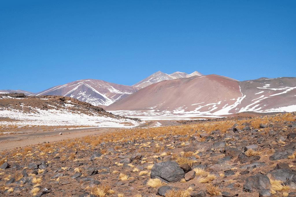 Colors of the Lagunas Altiplanicas - Atacama Desert.