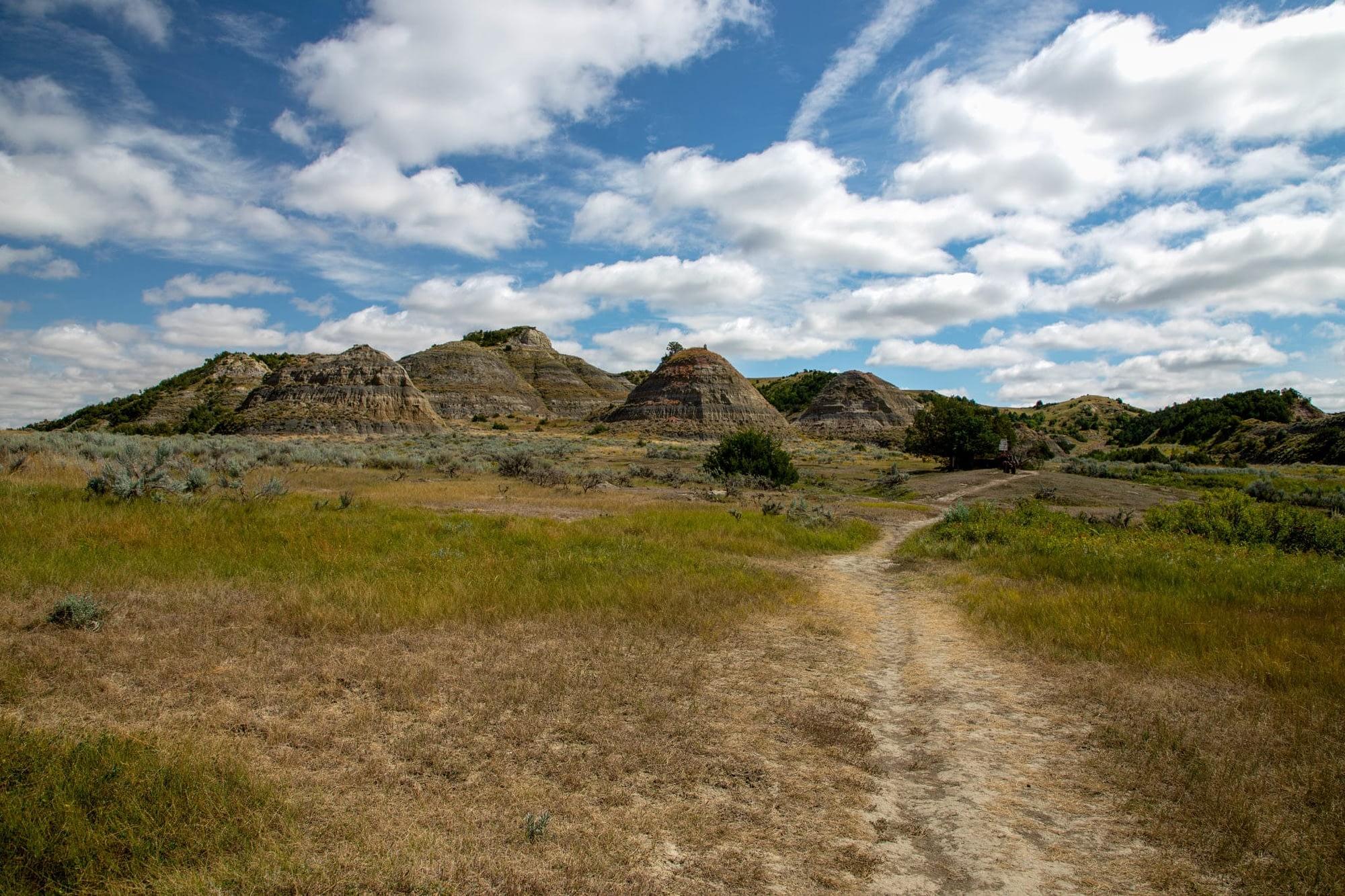 Grassy badlands of Theodore Roosevelt National Park