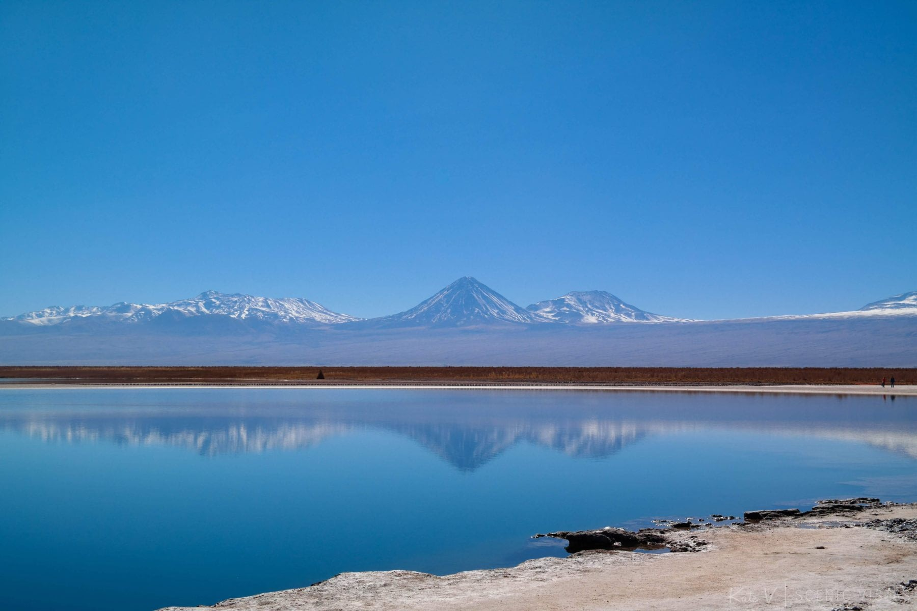 Snow-capped mountains reflecting in Laguna Cejar.