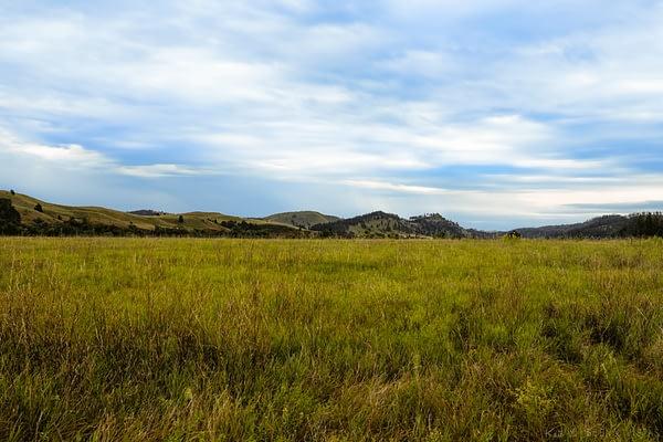 Rolling hills behind grasslands of South Dakota