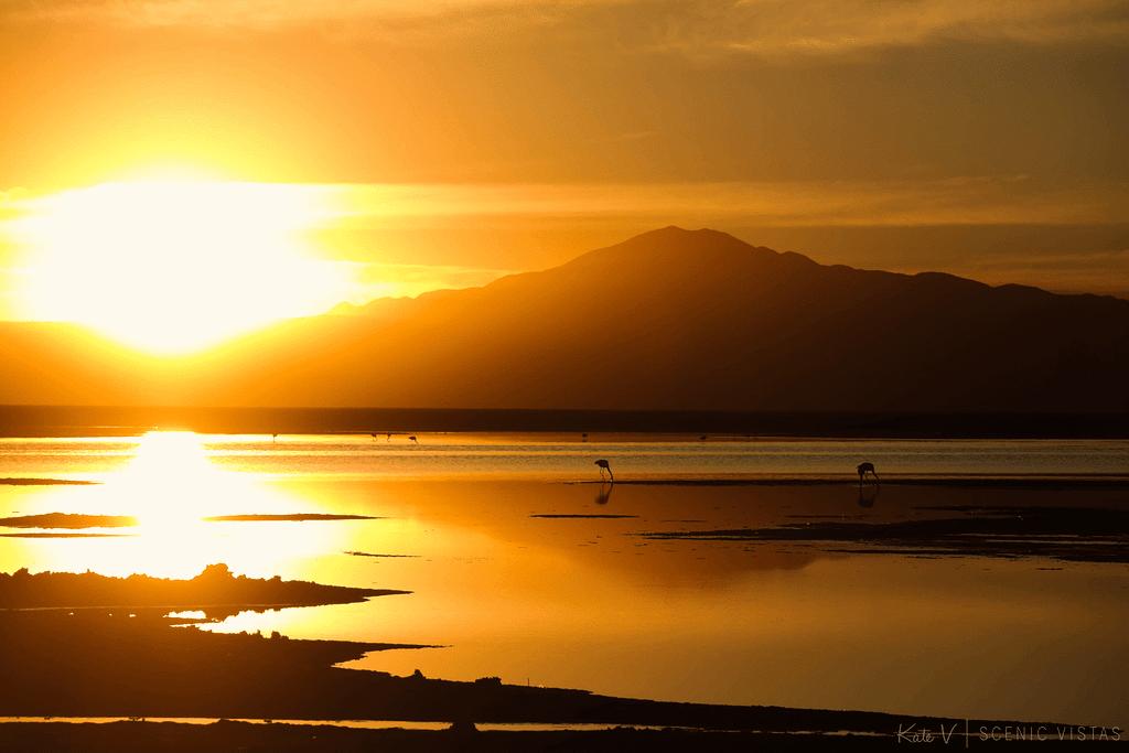 Mountain reflection at sunset at Laguna Chaxa in Salar de Atacama.