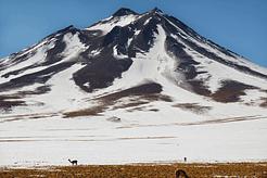Lagunas Altiplanicas - Atacama Desert, Chile.